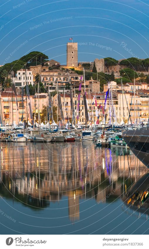 Yachts in the cannes bay at night Vacation & Travel Ocean Sailing Landscape Sky Coast Small Town Building Watercraft Yacht harbour Rich Idyll Cannes port France