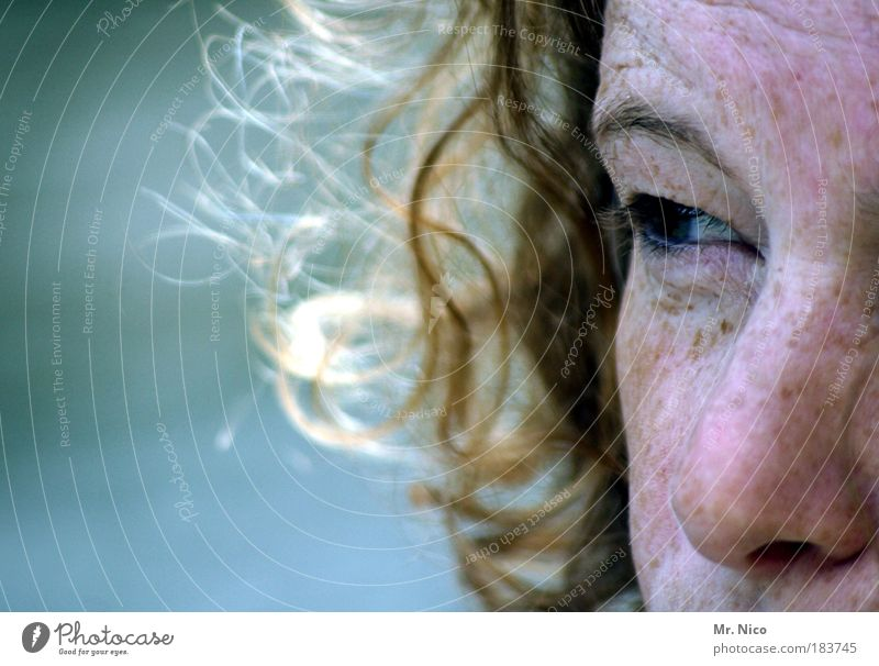 significance Looking away Skin Feminine Woman Adults Head Face Eyes Nose Observe Freckles Eyebrow Loneliness Trust feelings Emotions viewing direction Blonde