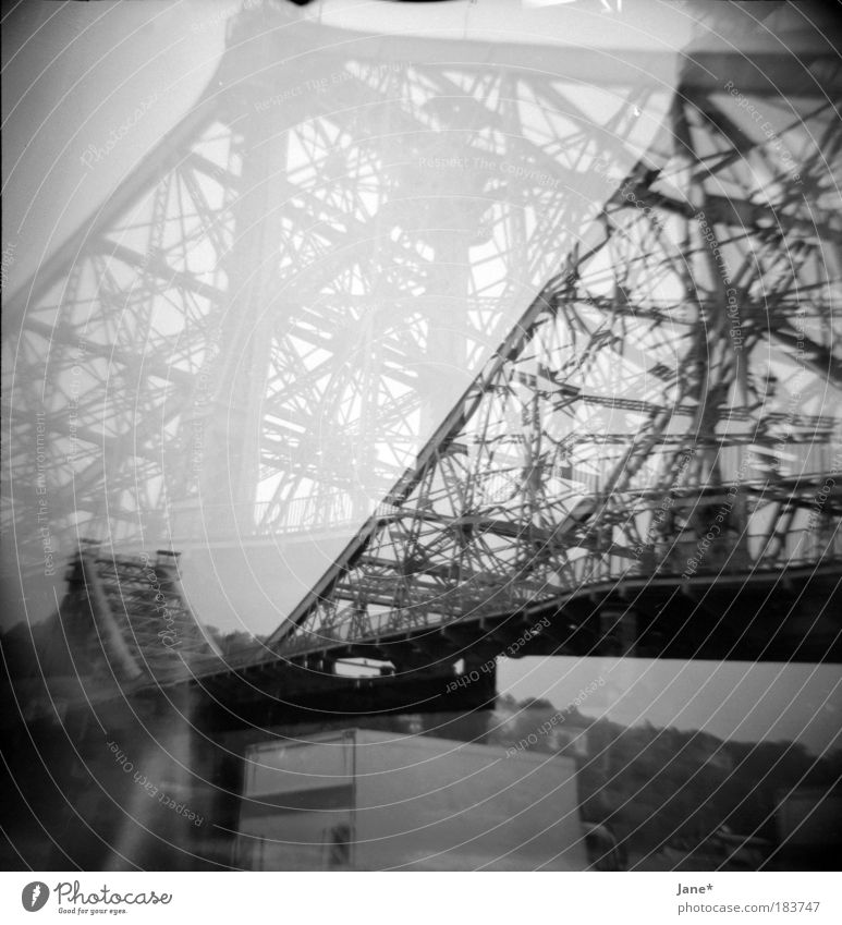 a miracle Black & white photo Exterior shot Experimental Lomography Structures and shapes Deserted Day Light Shadow Contrast Landscape Summer Bad weather Rain