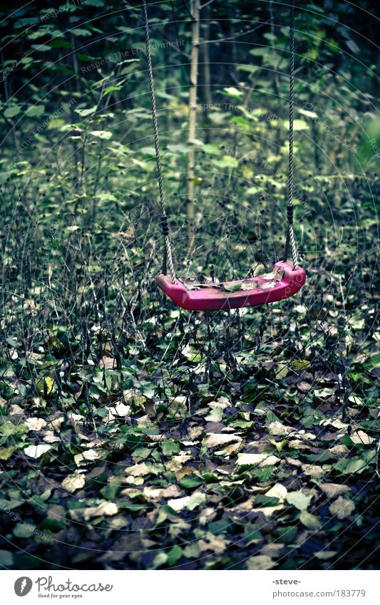 Forgotten Childhood Colour photo Exterior shot Deserted Day Infancy Forest To swing Green Red Longing Lose Swing Leaf Forget Memory Remember