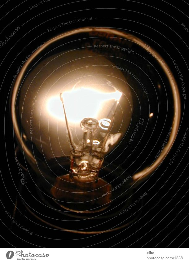 light bulb Light Lamp Electric bulb Electrical equipment Technology Glass Lighting