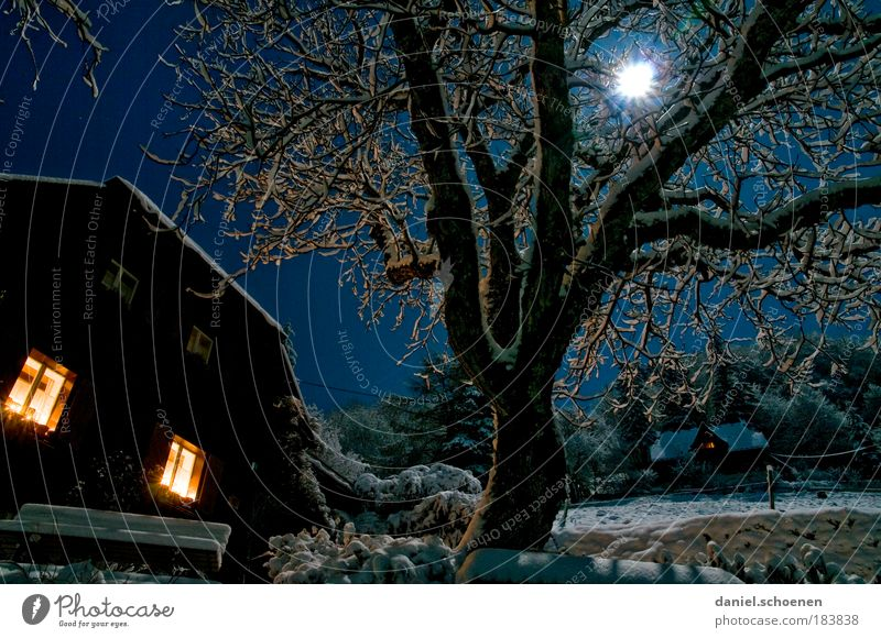 Night Sky Tree Blue Winter Vacation & Travel Nature Window Stars Energy House (Residential Structure) Light Leisure and hobbies Night sky Hut Moon
