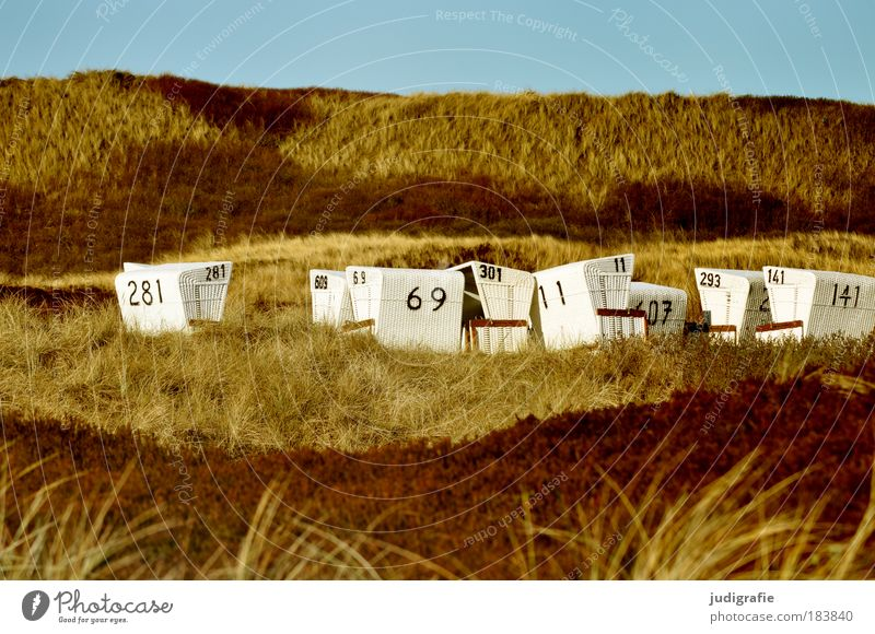 Nature Sky Ocean Plant Beach Vacation & Travel Relaxation Grass Landscape Coast Environment Tourism Digits and numbers Idyll Hill Beach dune