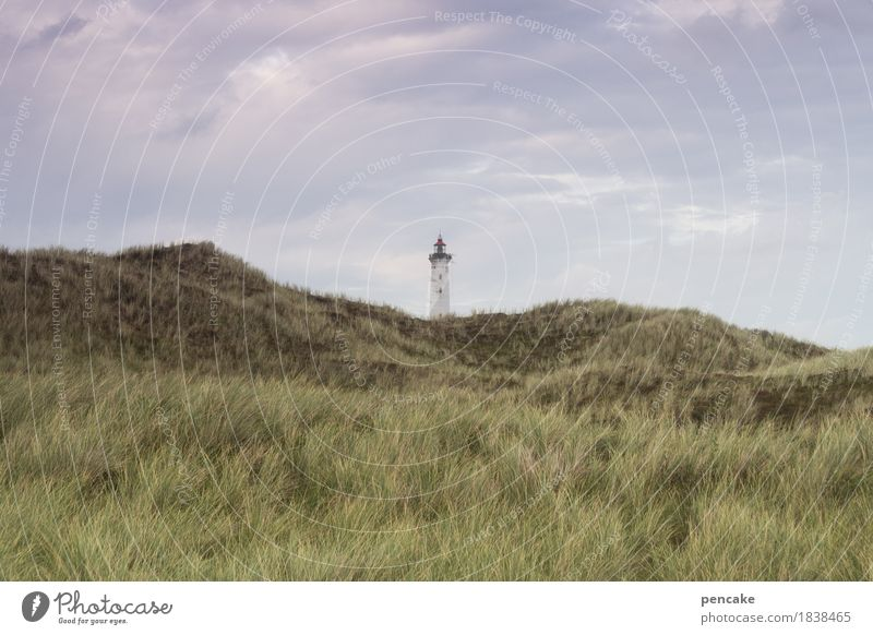 outside the box Nature Landscape Elements Sand Sky Grass North Sea Moody Anticipation Trust Peaceful Serene Calm Longing Denmark Marram grass Dune Lighthouse