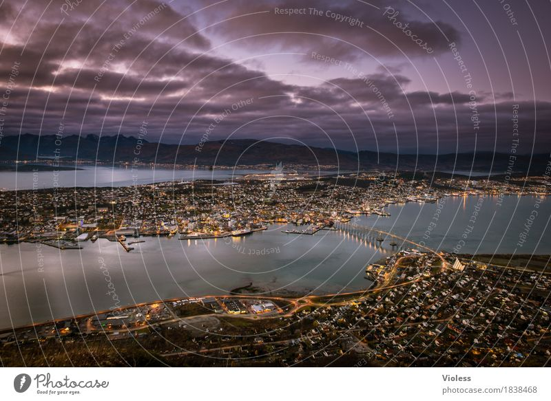 Dark Lighting Glittering Bridge Historic Violet Discover Navigation North Sea Port City Norway Fjord Night shot Tromsø