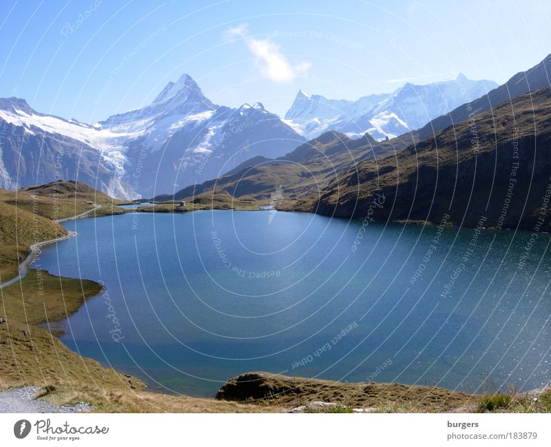 Bachalpsee Colour photo Subdued colour Exterior shot Deserted Copy Space middle Day Light Silhouette Sunlight Long shot Panorama (View) Wide angle Nature