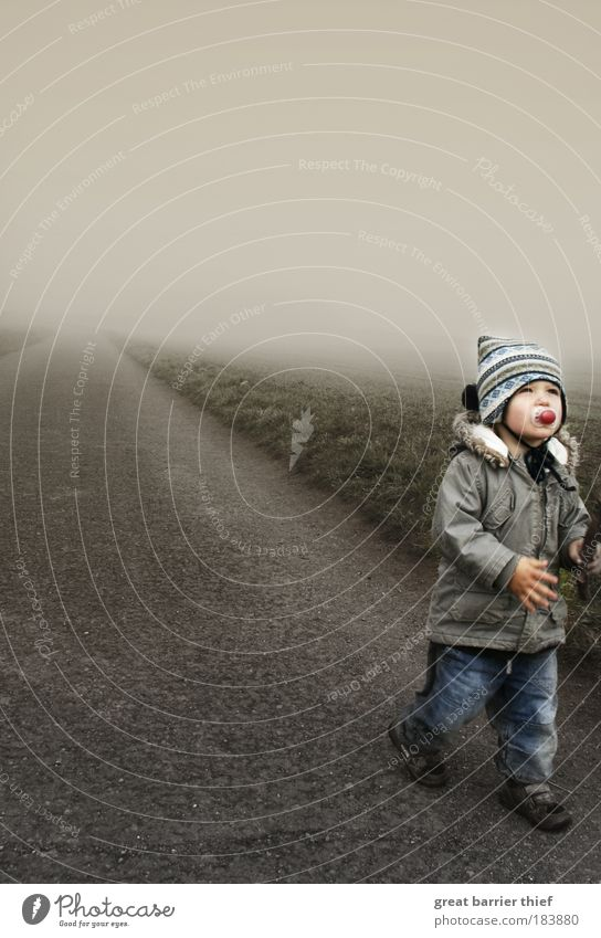 Human being Child Life Autumn Boy (child) Gray Lanes & trails Think Infancy Going Fog Walking Natural Hiking Concrete Masculine