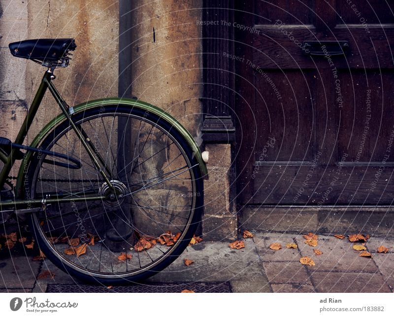 green donkey Lifestyle Leisure and hobbies Living or residing House (Residential Structure) Bicycle Environment Autumn Building Door Transport