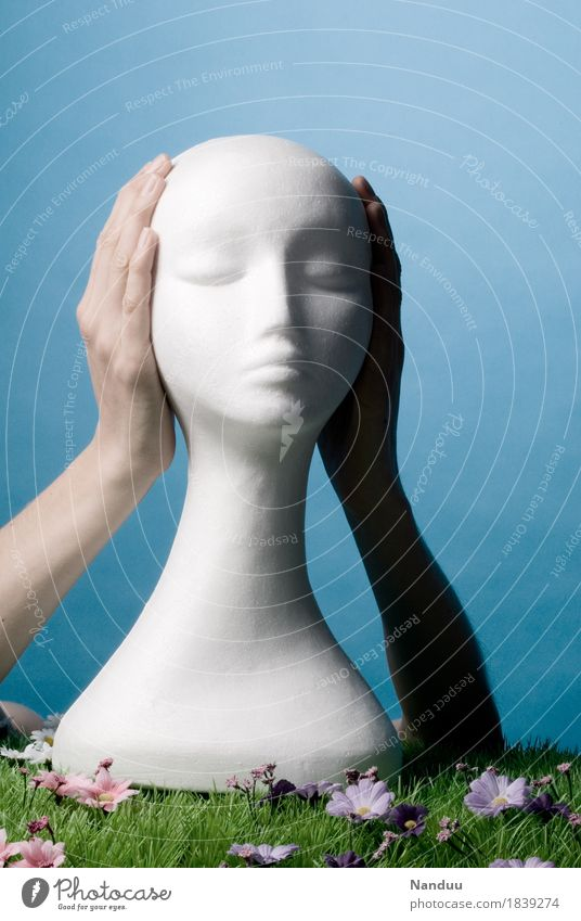 Human being Hand Head Fear of death Close Truth Keep sth. closed  Ignore