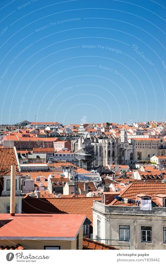 Roofed sea of Lisbon Vacation & Travel Far-off places City trip Summer Summer vacation Sun Beautiful weather Portugal Town Capital city Downtown Old town