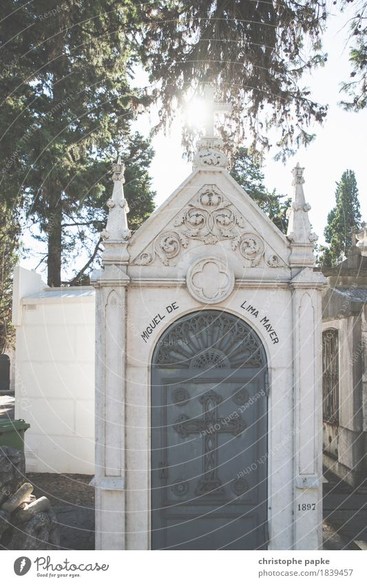 To the light Lisbon Town Capital city Downtown Manmade structures Building Old Bright Historic Beautiful Death Grave Tomb Cemetery Colour photo Exterior shot