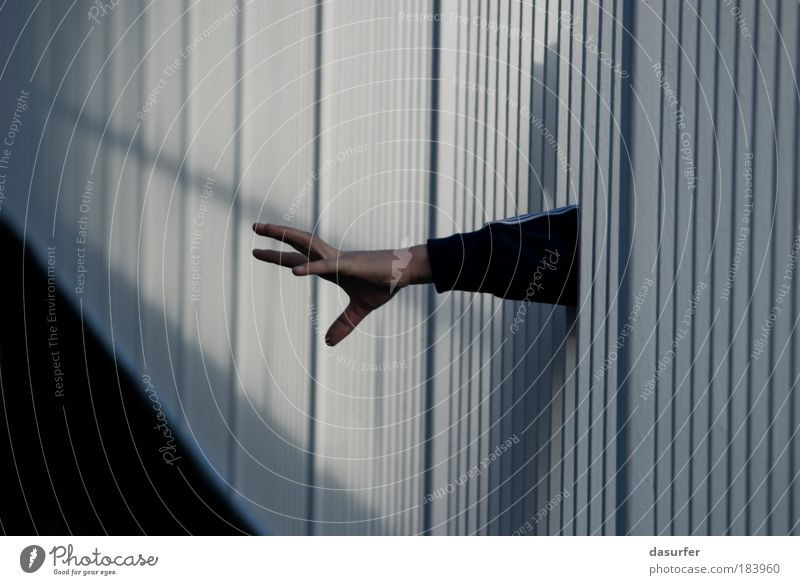 Catch Me If You Can Colour photo Subdued colour Exterior shot Abstract Pattern Structures and shapes Copy Space left Copy Space right Copy Space bottom Day