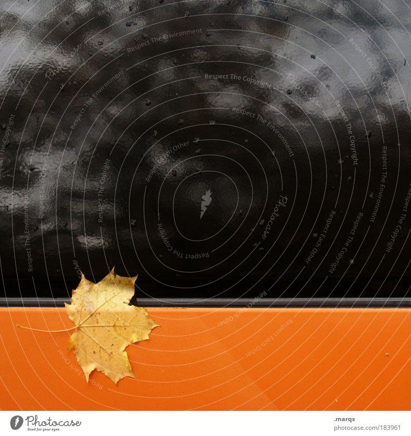 Plant Leaf Black Loneliness Cold Autumn Style Orange Metal Wet Gloomy Simple Uniqueness Sign Illustration