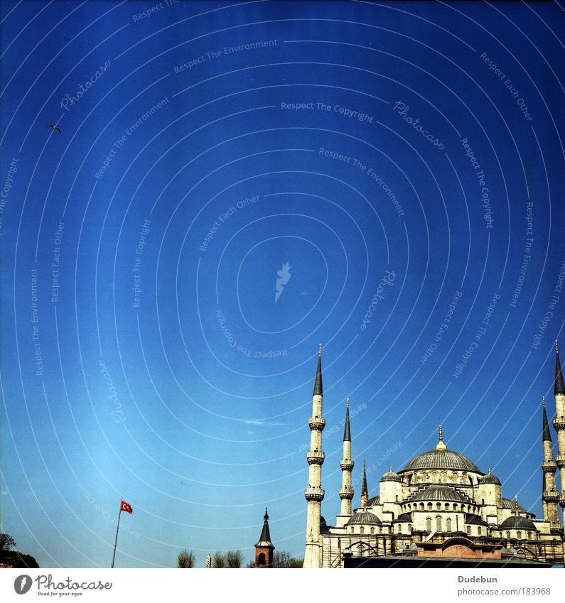 The Blue Mosque Istanbul Church Landmark Historic Religion and faith Blue sky Minaret Islam Place of worship Tourist Attraction Turkey Colour photo
