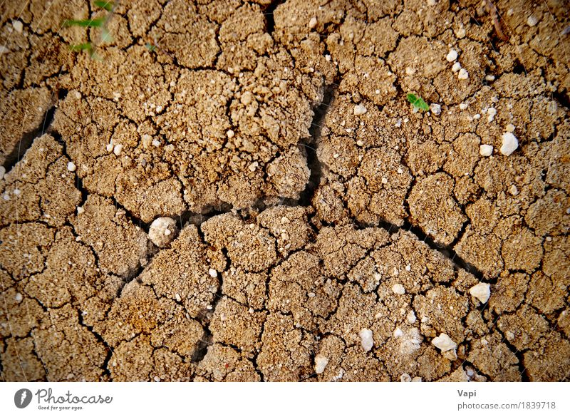Dry yellow soil in the desert Nature Summer Environment Yellow Natural Stone Brown Sand Weather Earth Dirty Climate Ground Desert Hot Crack & Rip & Tear