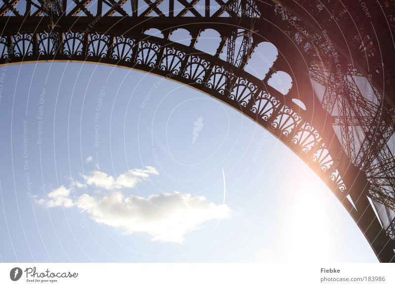 Paris Colour photo Exterior shot Detail Copy Space bottom Day Light Contrast Silhouette Reflection Sunlight Back-light Capital city Tower Manmade structures