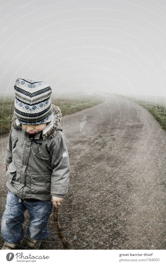 Human being Child Loneliness Autumn Life Boy (child) Gray Lanes & trails Infancy Contentment Fog Going Wait Hiking Growth Toddler