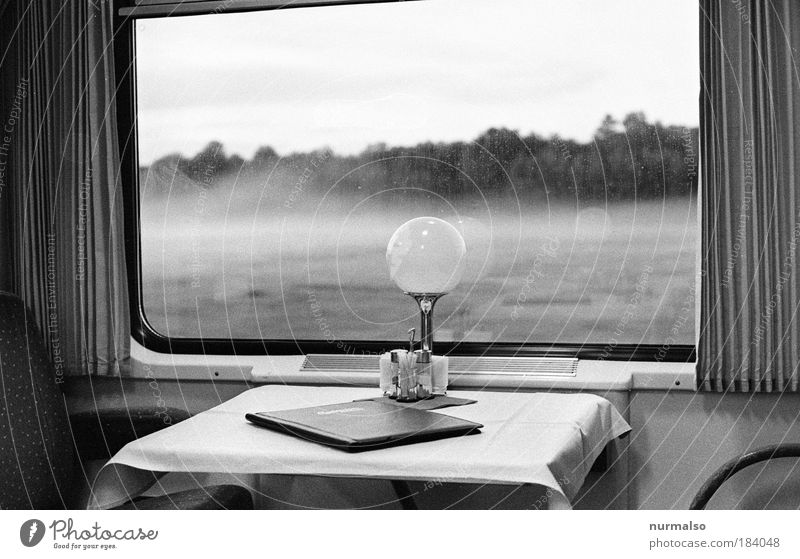 Nature Vacation & Travel Far-off places Environment Train window Art Freedom Lamp Fog Transport Nutrition Trip Railroad Traffic infrastructure Passenger traffic Sympathy