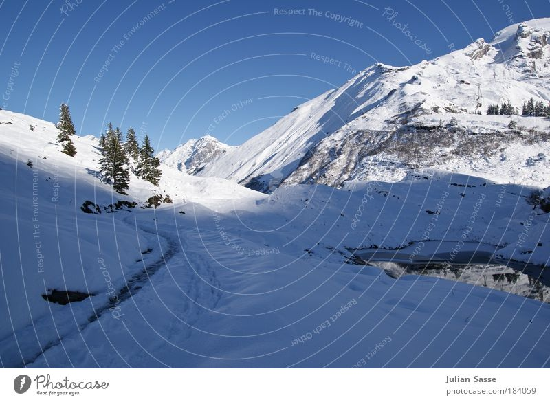 Water Sun Winter Snow Mountain Lake Landscape Environment Esthetic Canton Obwalden Switzerland Fir tree Blue sky Gorgeous Engelberg