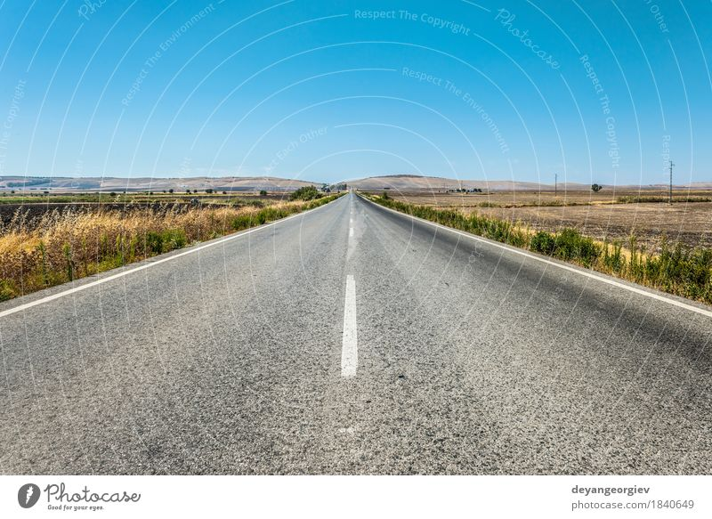 Long asphalt road Vacation & Travel Trip Freedom Summer Nature Landscape Sky Horizon Tree Grass Forest Transport Street Line Movement Speed Blue Green