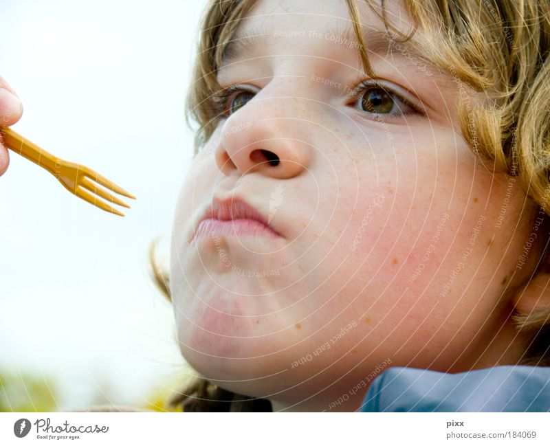 Human being Child Boy (child) Head Eating Blonde Nutrition Individual To enjoy Curl Appetite Partially visible Fast food Sense of taste Schoolchild 1 Person
