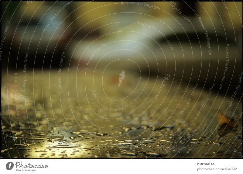 602, Weather residue Colour photo Abstract Structures and shapes Morning Blur Motorsports Art Environment Nature Autumn Climate Bad weather Storm Rain Deserted