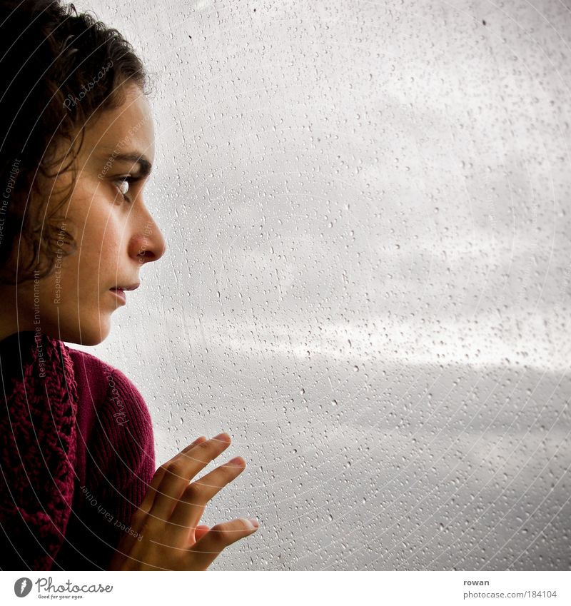 Woman Human being Hand Youth (Young adults) Loneliness Dark Cold Feminine Window Sadness Rain Adults Wet Grief Gloomy Longing