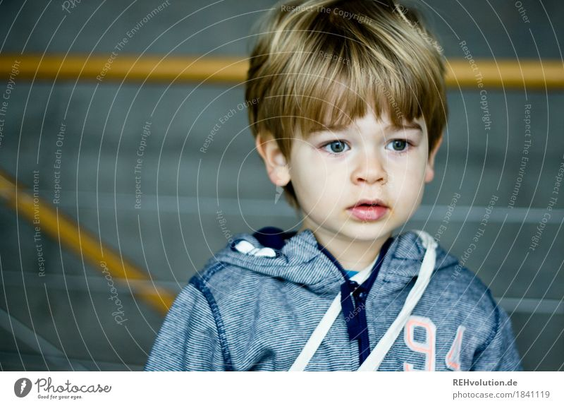 in the university Human being Masculine Child Toddler Boy (child) Face 1 1 - 3 years Sweater Hair and hairstyles Concrete Observe Authentic Small Natural Cute