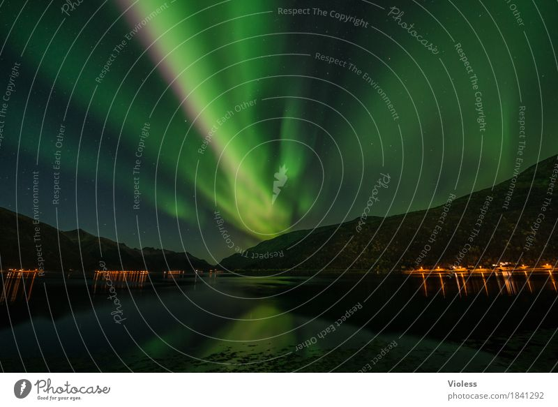 northern lights V Nature Sky Clouds Night sky Horizon Autumn Aurora Borealis Fjord Movement Exceptional Infinity Humble Mysterious Surrealism Light Shadow
