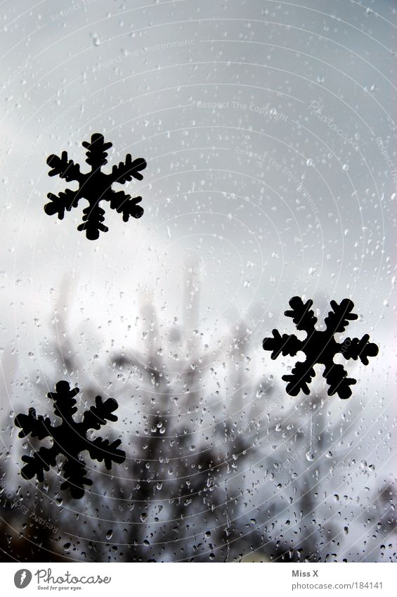 Water Christmas & Advent Clouds Cold Snow Window Gray Depth of field Environment Colour photo Copy Space Sadness Rain Nature Weather Drops of water