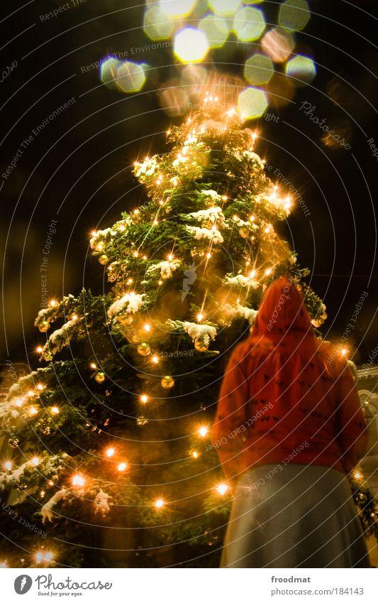 Human being Christmas & Advent Christmas decoration Woman Feminine Cold Snow Dream Tree Light Back Plant Large Hope Romance Christmas tree