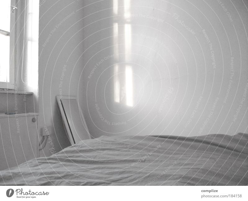 white space Black & white photo Subdued colour Interior shot Copy Space right Copy Space top Copy Space bottom Morning Light Shadow Contrast Silhouette Sunbeam