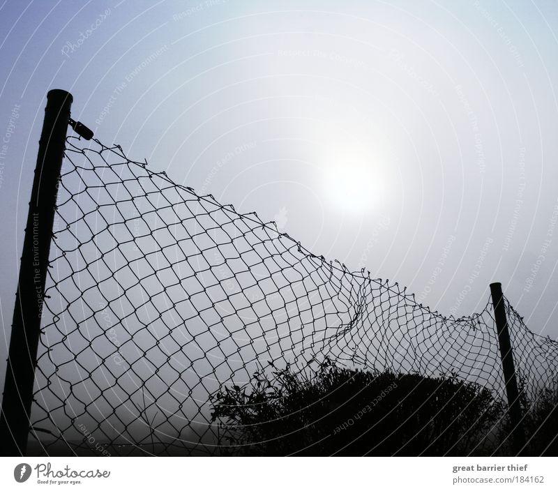 Blue Life Autumn Free Horizon Hope Broken Catch Fence Watchfulness Responsibility Attentive Humanity