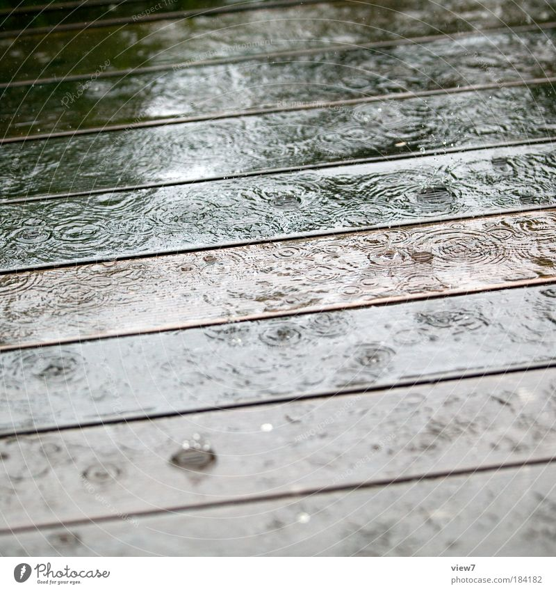 Nature Water Cold Relaxation Jump Freedom Wood Dream Sadness Rain Line Dance Environment Drops of water Wet Simple