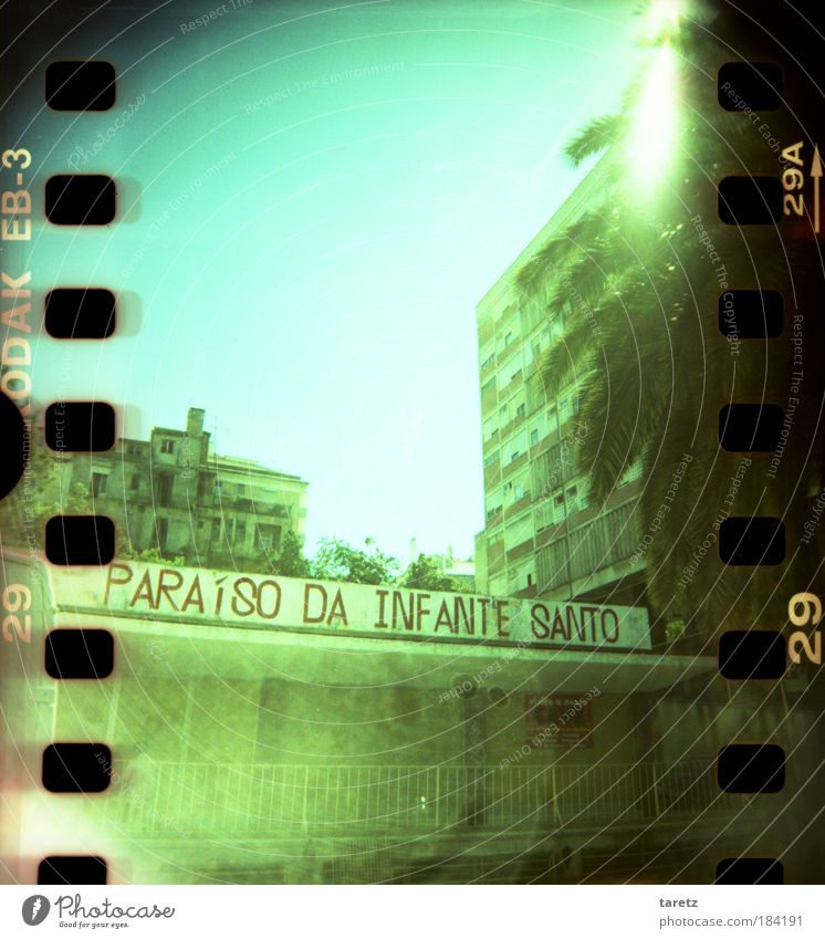 Old Green Lomography City Poverty High-rise Authentic Characters Gloomy Digits and numbers Simple Light (Natural Phenomenon) Reflection Dawn Handrail