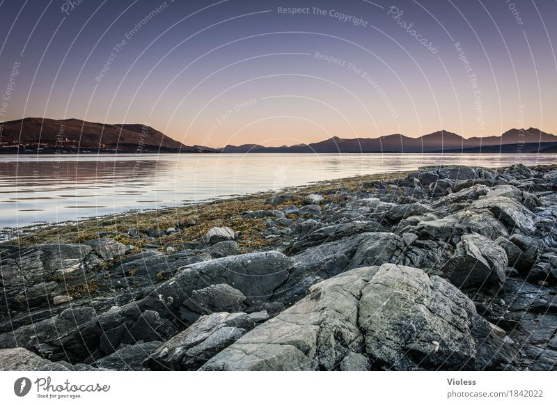 I often think of... Nature Landscape Elements Water Fjord Norway Deserted Panorama (View) Stone Rock Coast Lakeside River bank
