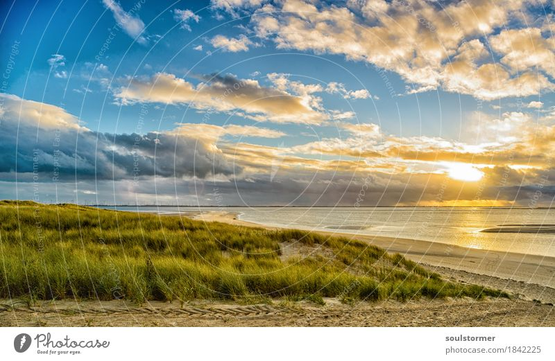 Sunset at Langeoog Nature Landscape Plant Water Sky Clouds Autumn Coast Lakeside North Sea Ocean Island Contentment Joie de vivre (Vitality) Dune Calm Peace