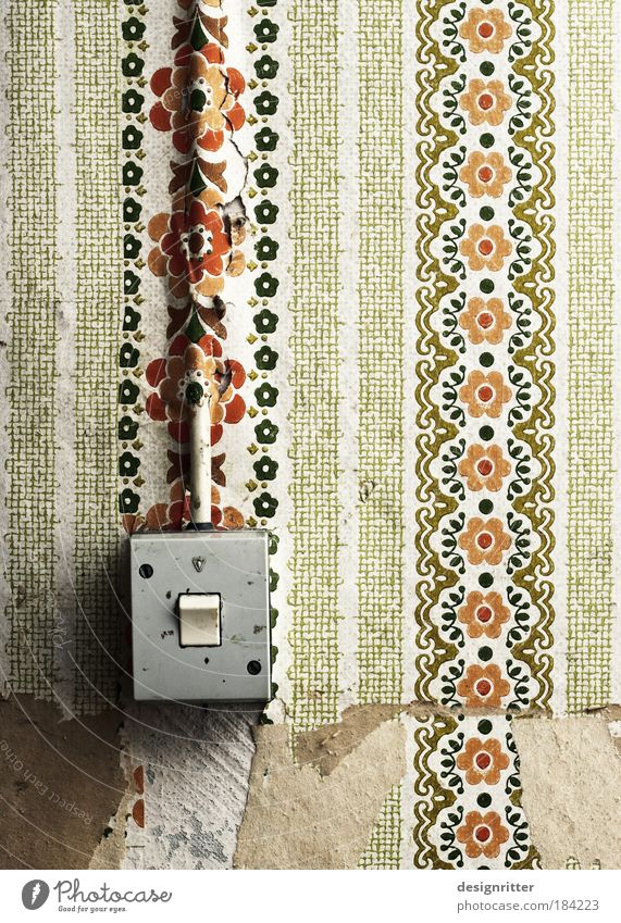 surface Colour photo Subdued colour Interior shot Close-up Deserted Wallpaper Light switch Cable Transmission lines Old Dirty Retro Floral wallpaper