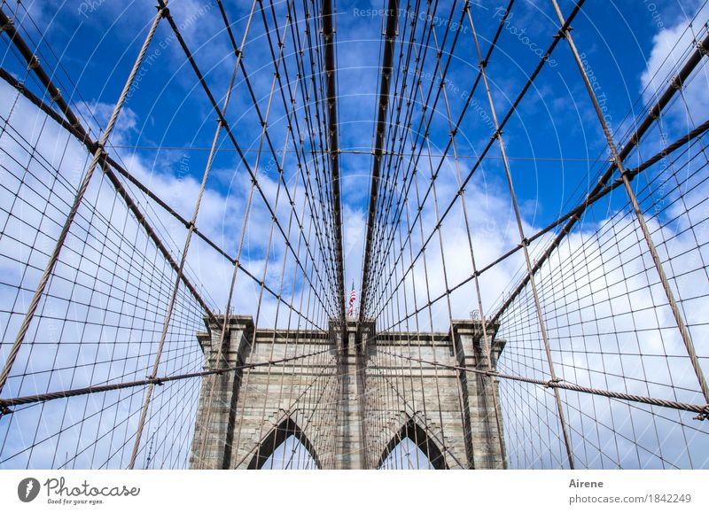 there's another one who knows his way around. Sky Beautiful weather New York City USA Americas Bridge Tourist Attraction Landmark Brooklyn Bridge Stone Metal