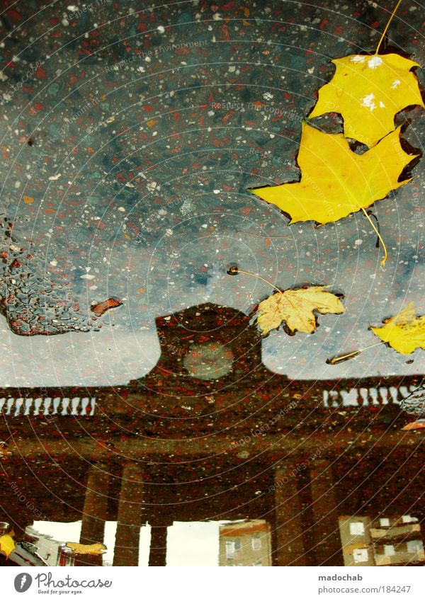 Water Leaf Autumn Architecture Environment Time Authentic End Climate Clock Transience Longing Past Seasons Watchfulness Storm