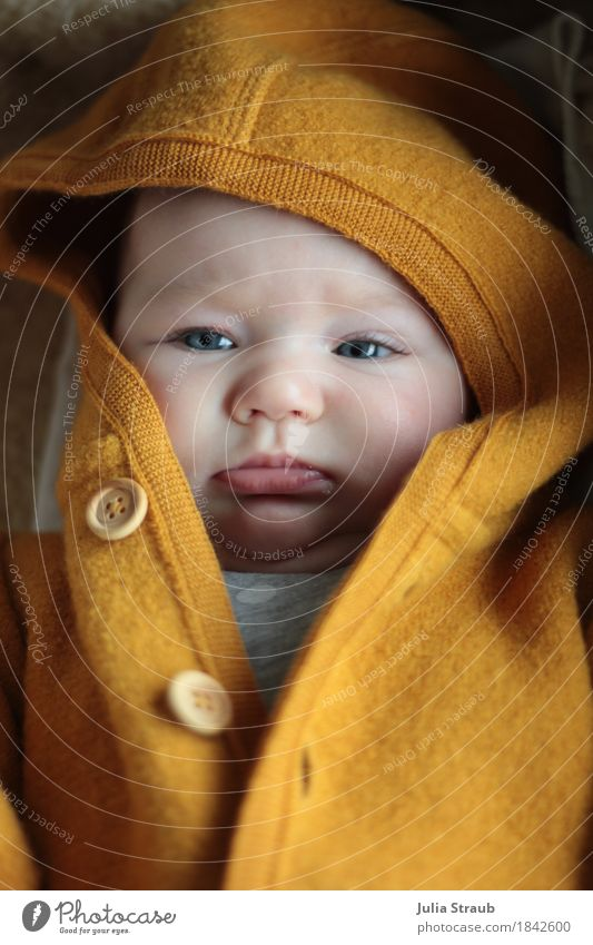 Human being Colour Beautiful Cold Yellow Feminine Wood Small Head Lie Infancy Baby Cute Cap Buttons Cuddly
