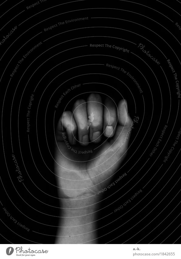 knock knock Skin Feminine Hand Fingers Touch Threat Dark Creepy Power Determination Animosity Fist Knock Fingernail Force Black & white photo Detail