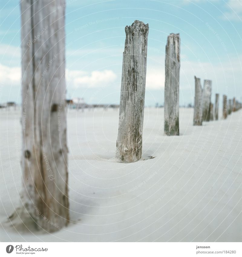 1862247 Vacation & Travel Trip Summer Beach Environment Nature Sand Sky North Sea Relaxation Far-off places St. Peter-Ording Wood Wooden stake Colour photo