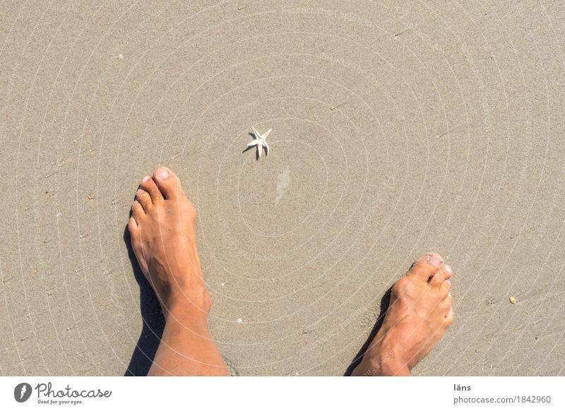 Vacation & Travel Beach Feet Sand Maritime Starfish