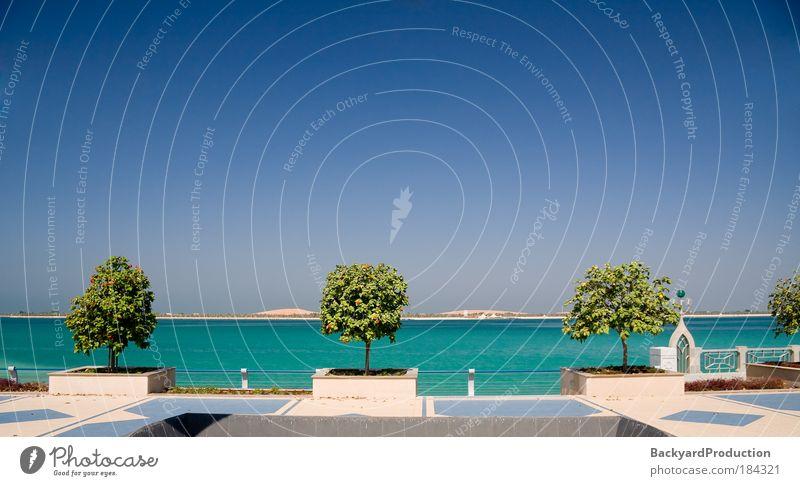 View of the Gulf of the coast of Abu Dhabi Sky White Tree Ocean Flower Blue Summer Beach Vacation & Travel Sand Bright Coast Horizon Island Nature Hot