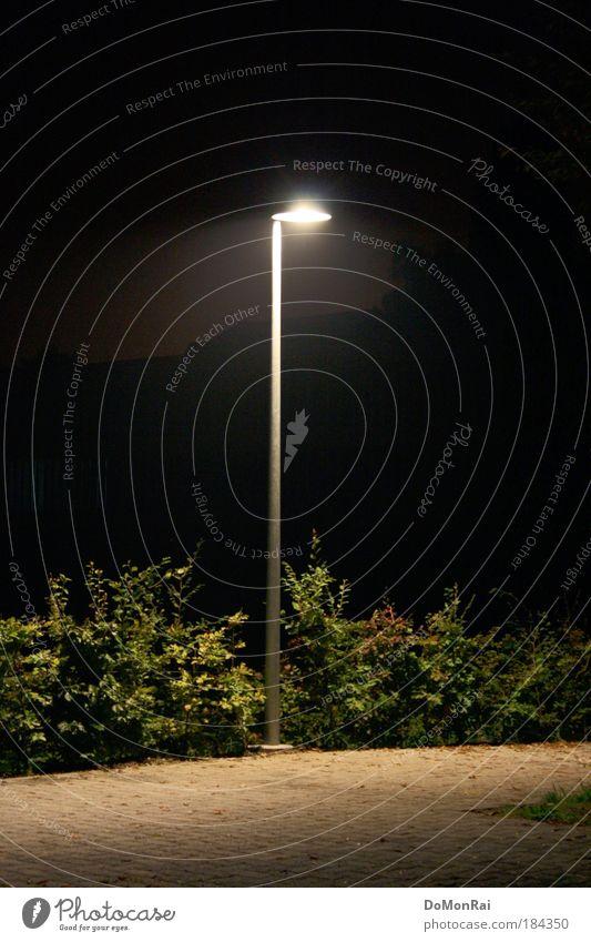 Plant Summer Black Loneliness Dark Lanes & trails Stone Sadness Lamp Lighting Energy Europe Illuminate Bushes Uniqueness Longing