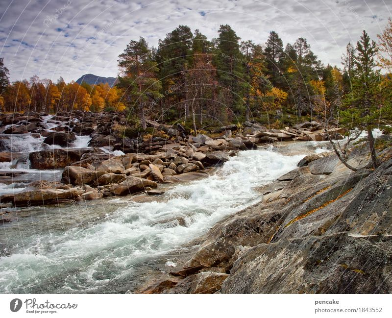 electricity suppliers Nature Landscape Elements Water Sky Clouds Autumn Rock Mountain Waves River Waterfall Fantastic Fresh Large Speed Norway