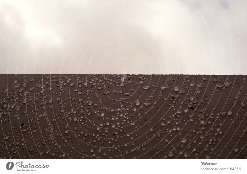 wall drops Winter Art Artist Work of art Environment Nature Water Drops of water Sky Clouds Bad weather Fog Rain Monument Wet Brown Red Climate Stone steal