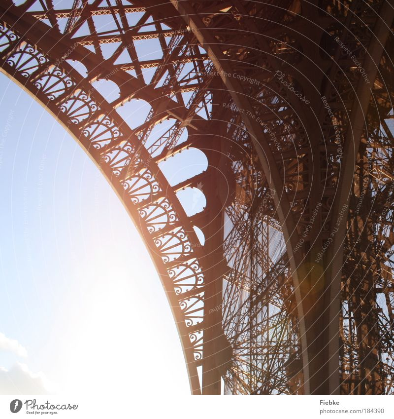 Eiffel Tower Colour photo Exterior shot Detail Pattern Structures and shapes Copy Space left Light Contrast Reflection Sunlight Sunbeam Back-light Tourism