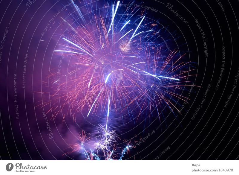 Blue and purple colorful holiday fireworks Sky Christmas & Advent Colour Beautiful White Red Joy Dark Black Feasts & Celebrations Party Pink Bright Violet New